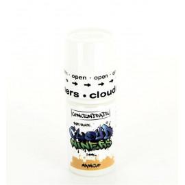 Mango Concentré Cloud Niners 30ml